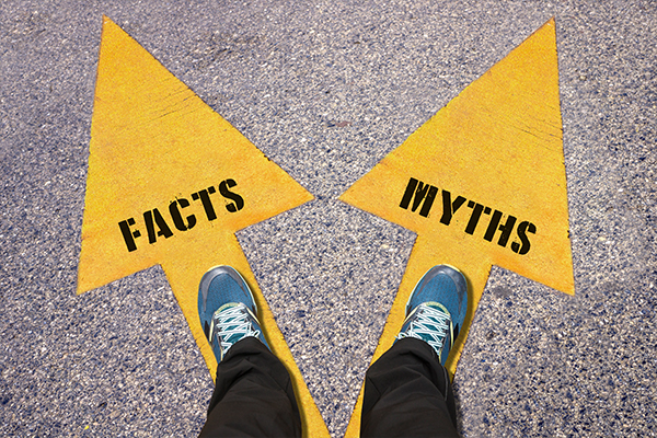 Illustration of two paths; facts. vs. myths